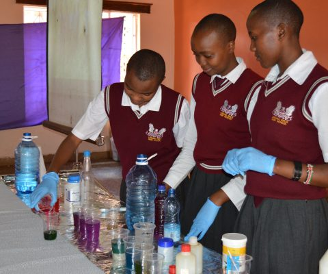Volunteer in Uganda!