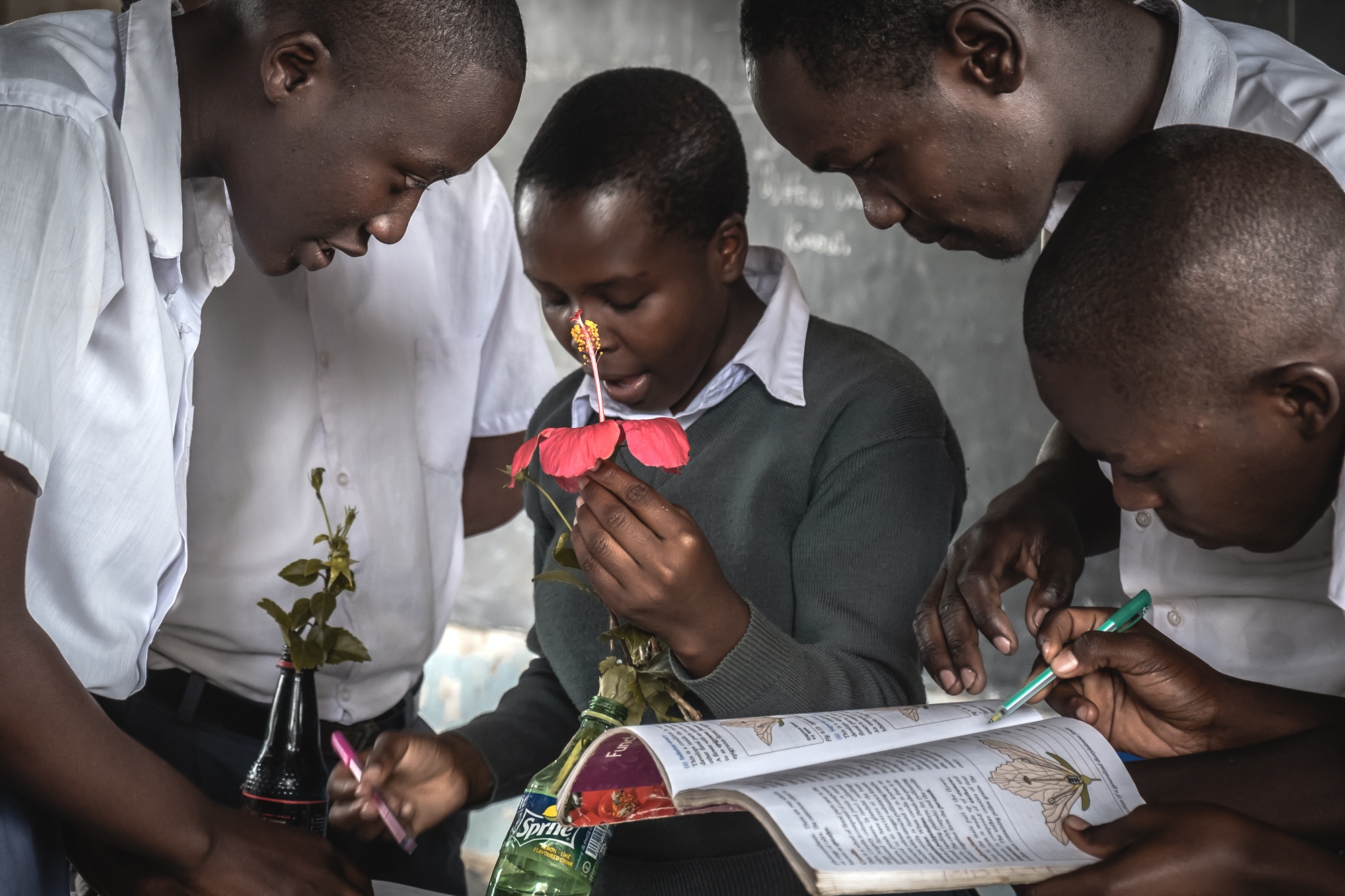 SeedScience is among the winners of the 2021 Youth Exchange Grant